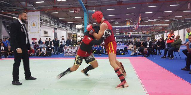 Europski kung fu wushu kup